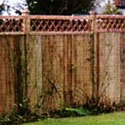 Trellis Flat Top On Top of Panel Trellis Top for fence Panels