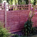 quare Trellis Flat Top On Top Of Panel Trellis for fence Panels