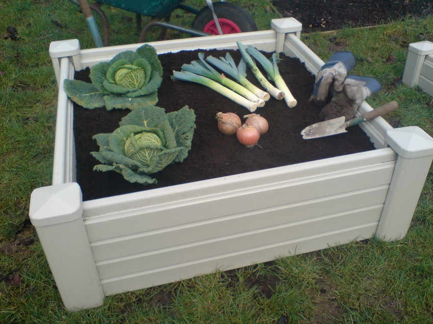 Plastic vegetable planter